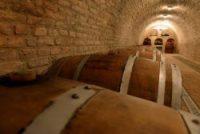 """""""Za obilazak vinarije i degustaciju vina neophodno je da se unapred prijavite. Događaji  se organizuju do 40 osoba po dogovoru."""""""